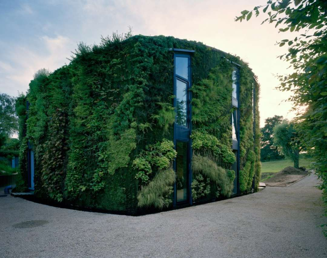Foliage Covered House in Brussels.